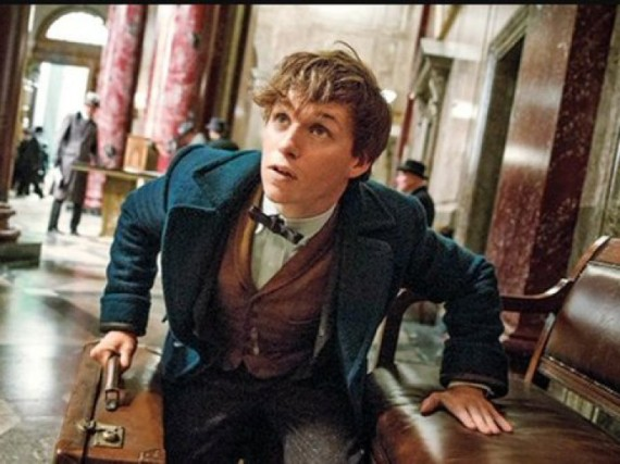 picture-of-eddie-redmayne-as-newt-scamander-photo-700x525